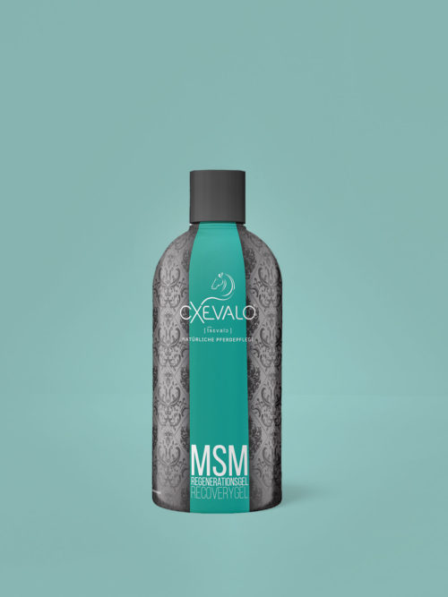 MSM Regeneration Gel - Healthy tendons, ligaments, muscles and joints thanks to organic sulphur and devil's claw!